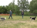 2012-05-31_longieren7a