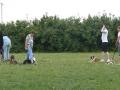 2012-07-01_hu-schule9a