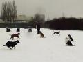 2013-02-24_Hu-schule2a.jpg