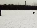 2013-02-24_Hu-schule8a.jpg