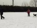 2013-02-24_Hu-schule9a.jpg