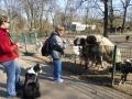 P1040707_Tierpark.jpg
