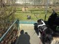 P1040759_Tierpark.jpg