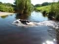 p1090012_schwimmt