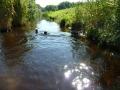 p1090015_schwimmen